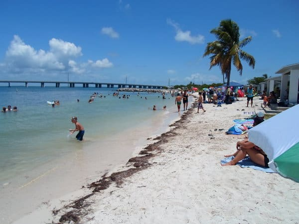Calusa Beach, Big Pine Key Florida, Best beaches of the Florida Keys, Florida Keys Travel guide, Florida Keys beaches