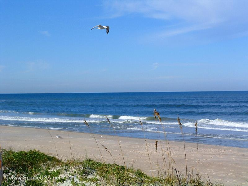 Canaveral National Seashore Florida, Best beaches of Florida's East Coast, Cocoa Beach beaches, Florida beaches, best beaches of Florida, best beaches of Cocoa Beach, Cocoa Beach Vacation Guide