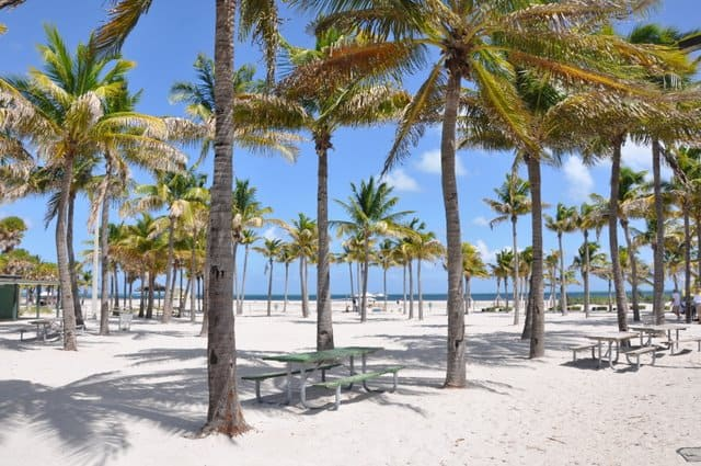 Crandon Beach, Best beaches of Florida's East Coast, Miami beaches, Florida beaches, best beaches of Florida, best beaches of Miami, Miami Travel Guide