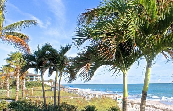 Humiston Park Florida, Best beaches of Florida's East Coast, Vero Beach beaches, Florida beaches, best beaches of Florida, best beaches of Vero Beach, Vero Beach Vacation Guide