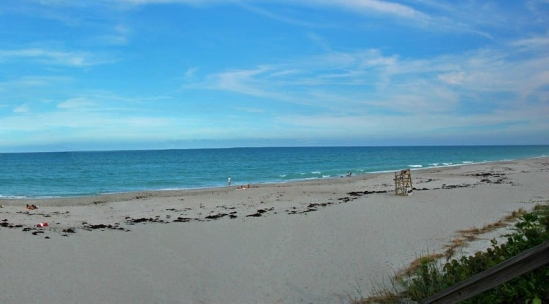 Dog Friendly Beaches Melbourne Florida