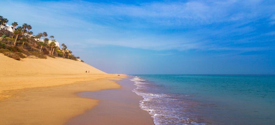 Morro Jable Beach, Morro Jable Fuerteventura, Canary Islands, Morro Jable Beaches, Fuerteventura beaches