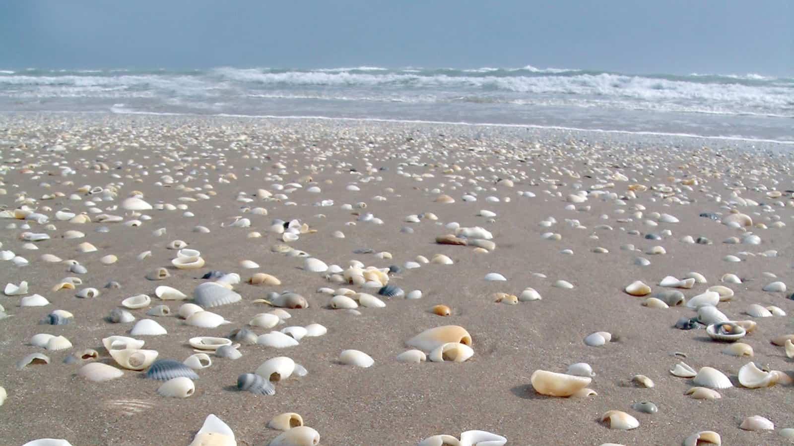 Best beaches in texas beach travel destinations for Best beach travel destinations