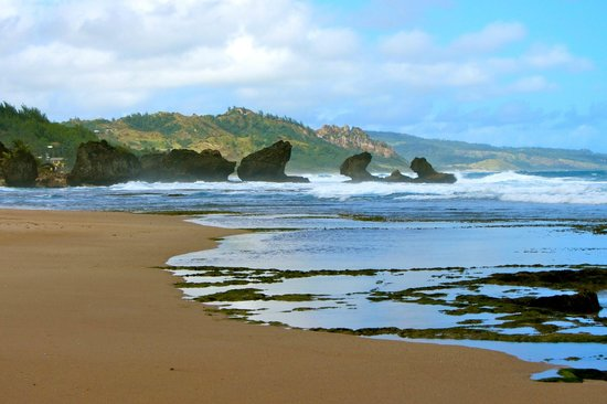 Bathsheba Beach, Barbados, best beaches of Barbados, Windward Islands, best beaches of the Windward Islands, Lesser Antilles Vacations, Best beaches of the Lesser Antilles, best beaches in the Caribbean
