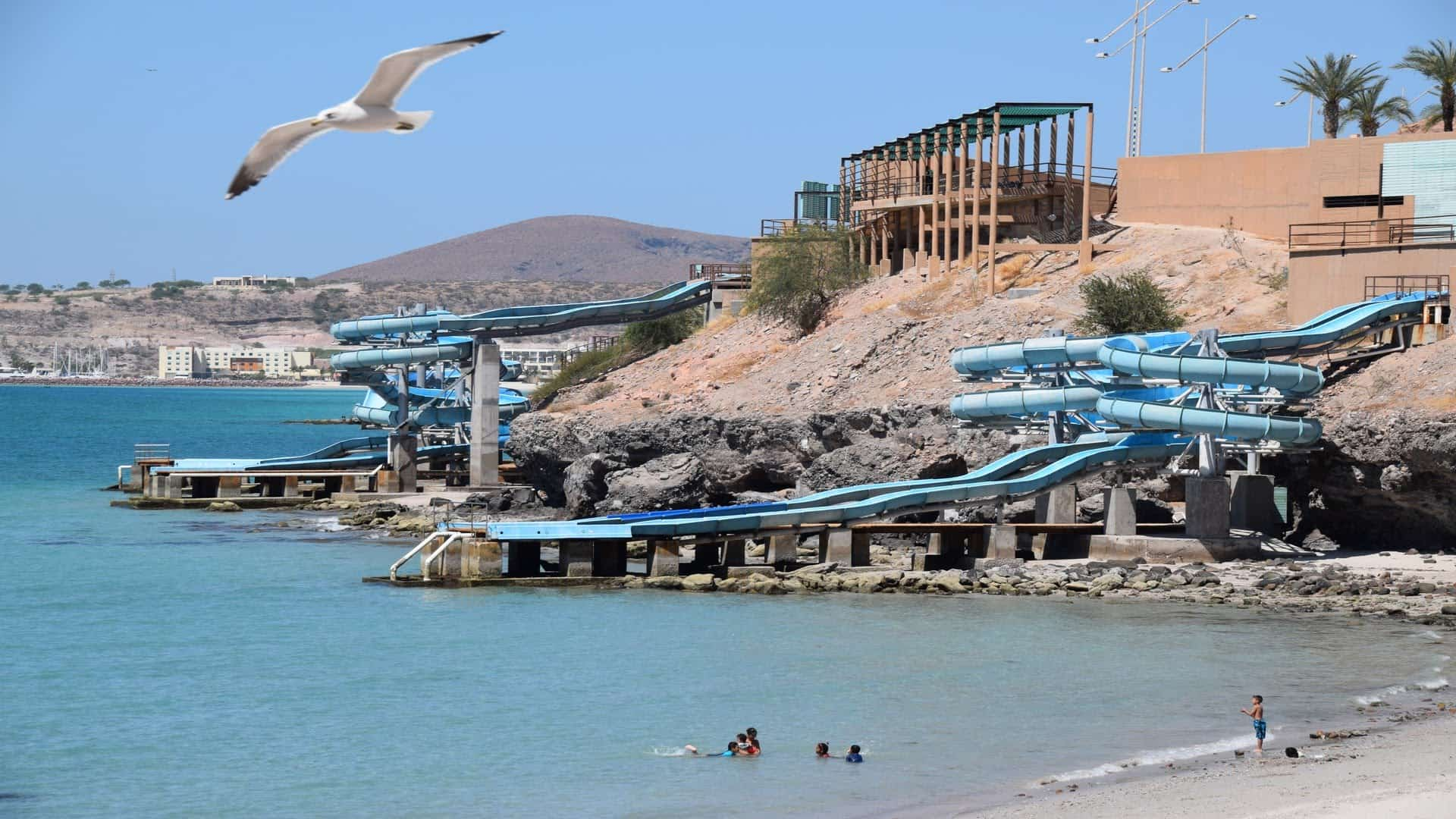 Best Restaurants In Baja California