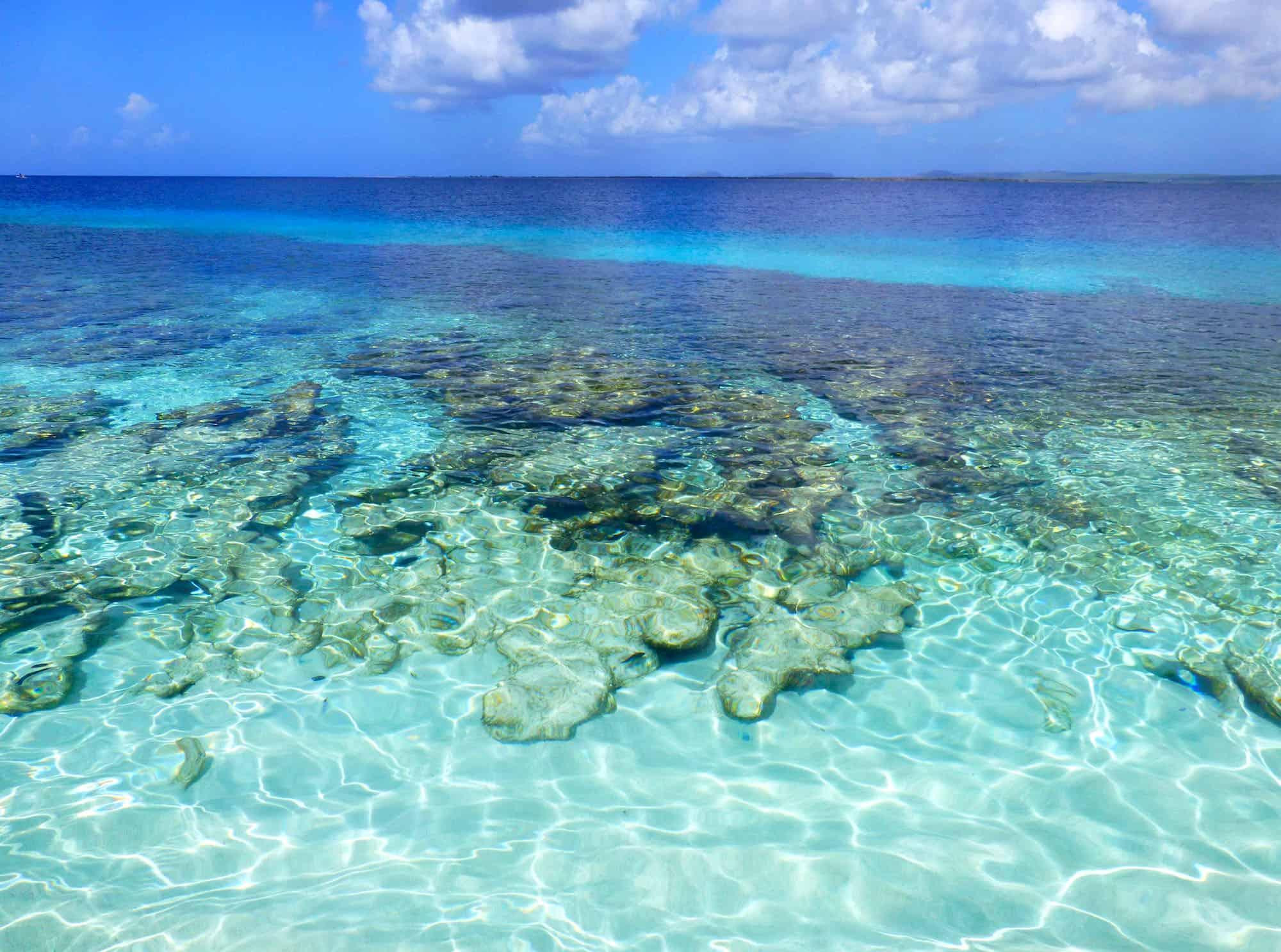 Te Amo Beach, Bonaire, best beaches of Bonaire, Leeward Antilles, best beaches of the Leeward Antilles, Lesser Antilles Vacations, Best beaches of the Lesser Antilles, best beaches in the Caribbean