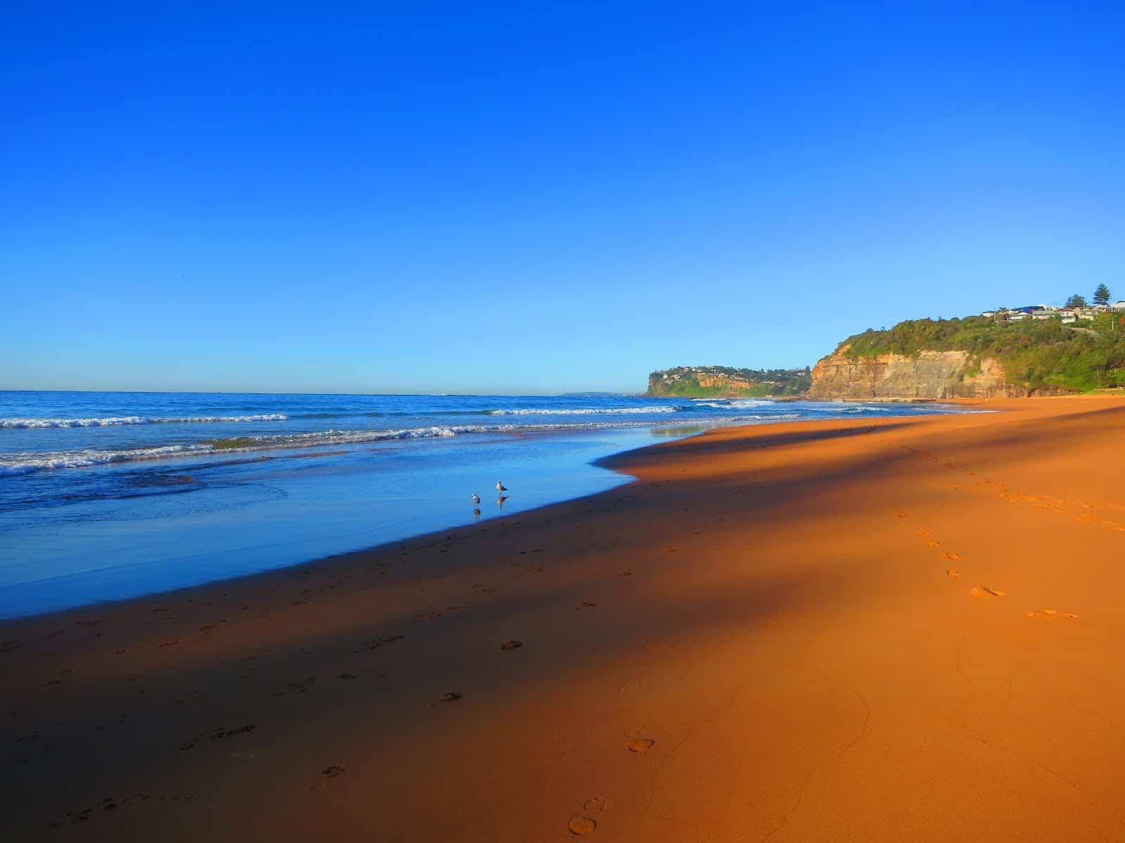Bilgola Beach, Sydney Australia