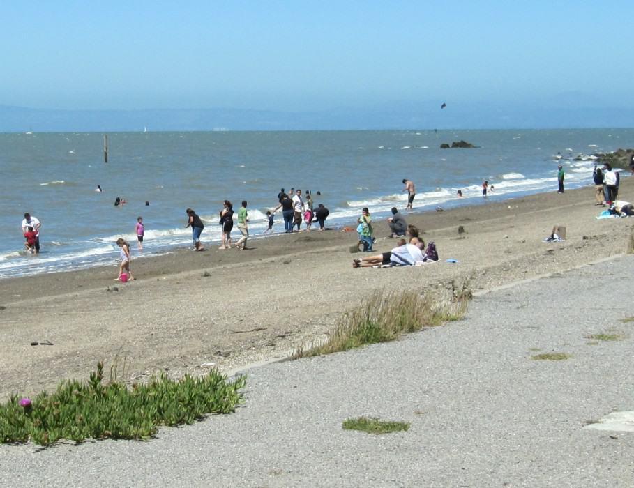 Coyote Point Beach San Mateo Ca