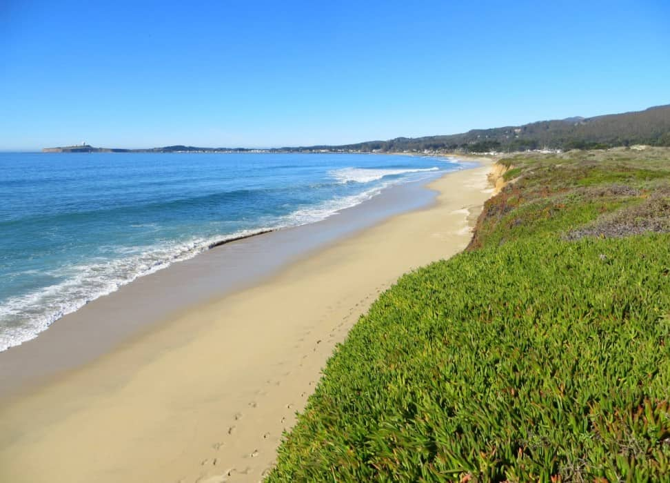 dunes-beach-half-moon-bay-state-beach