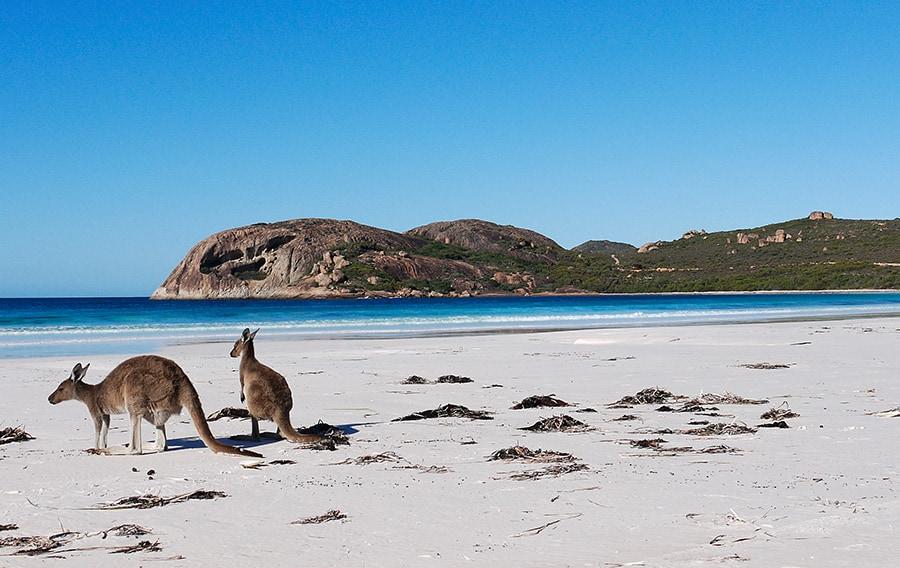 Island Beach, Adelaide Australia