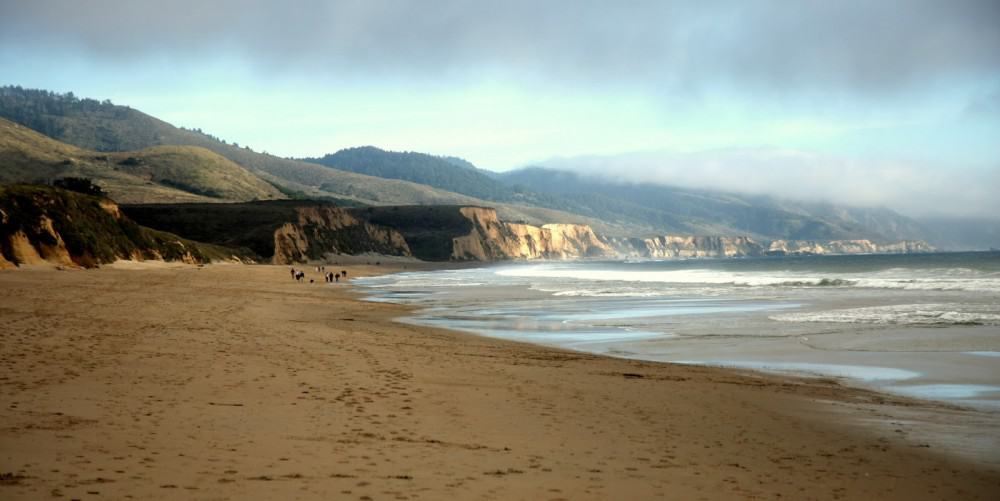 limantour-beach-in-point-reyes-station