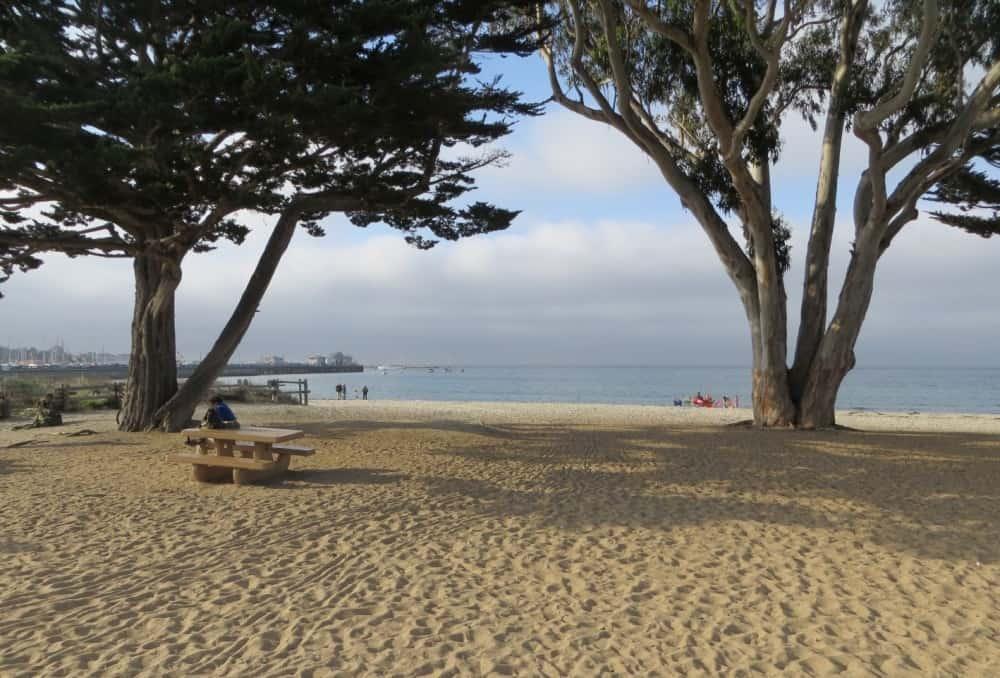 Best central california beaches beach travel destinations for Best beach in monterey ca