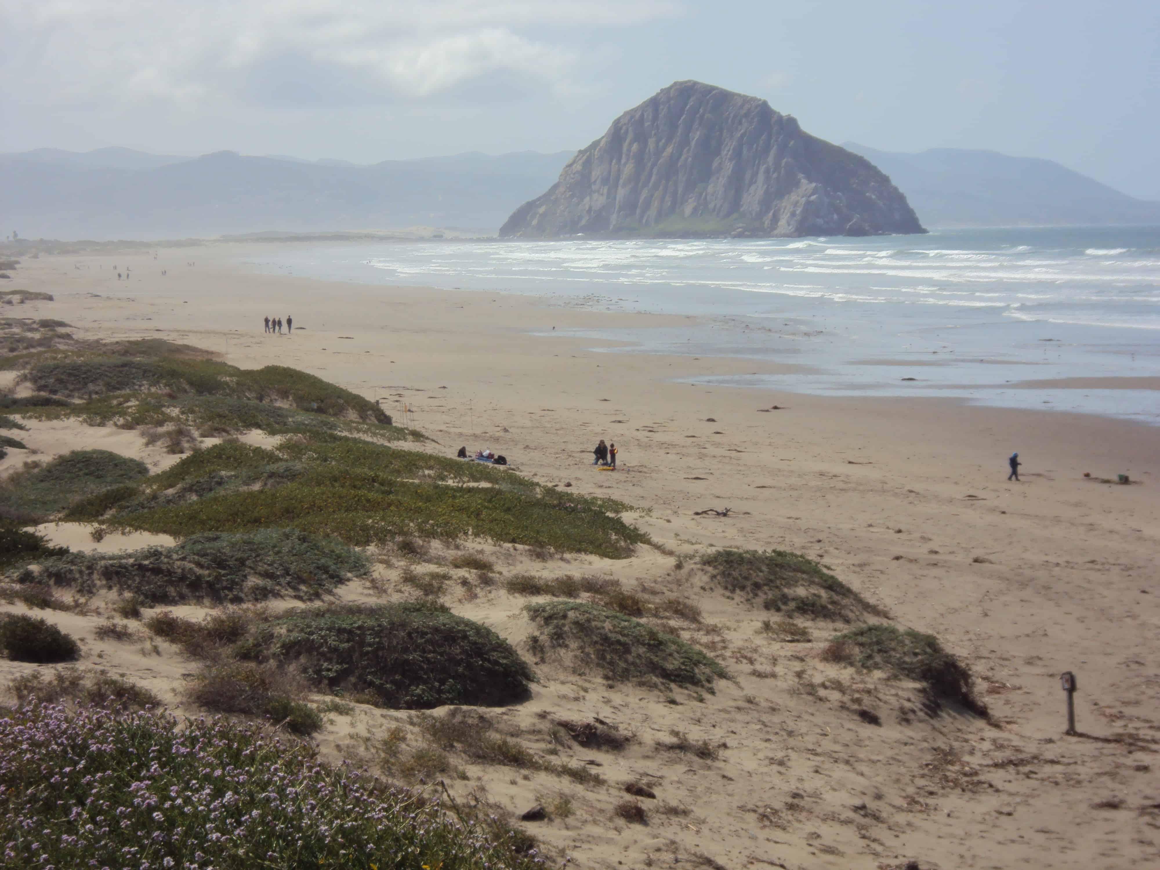 Morro Strand State Beach
