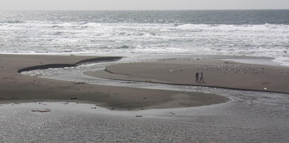 north-salmon-creek-beach-in-bodega-bay