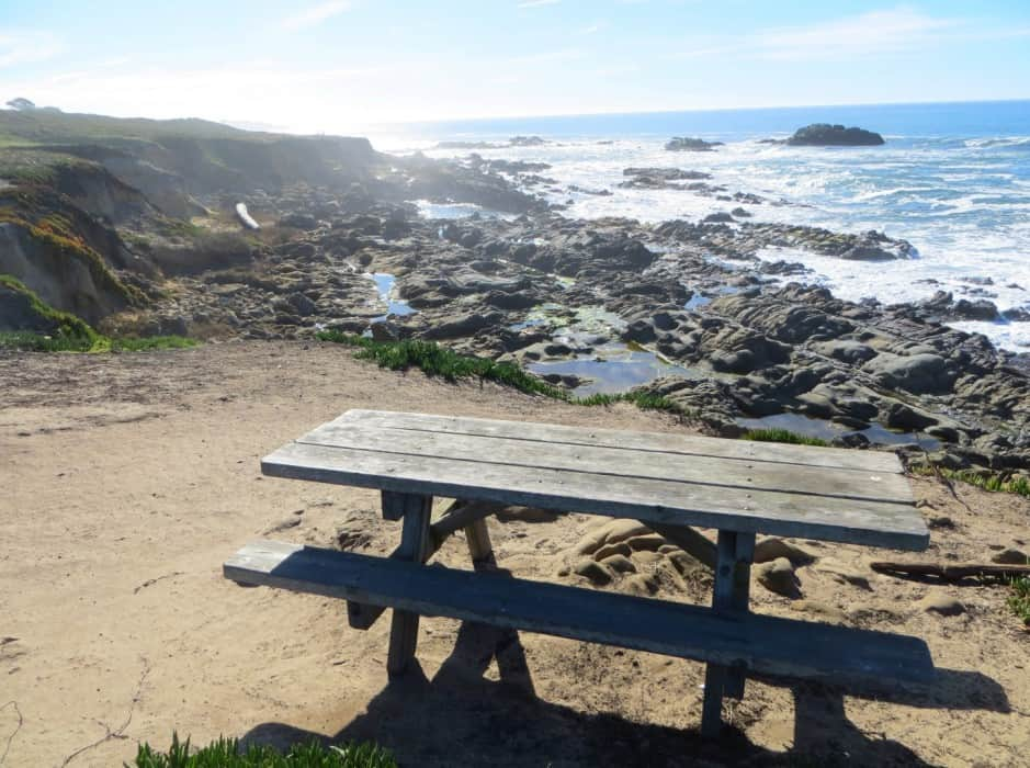 pebble-beach-at-bean-hollow-state-beach-in-pescadero