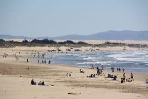 Pismo State Beach, Oceano California, Oceano beaches, things to do in Oceano, restaurants in Oceano, bars in Oceano, California beaches, Central California beaches, Oceano Tours, Oceano Attractions, things to do in Oceano, best Oceano hotels, best Oceano restaurants