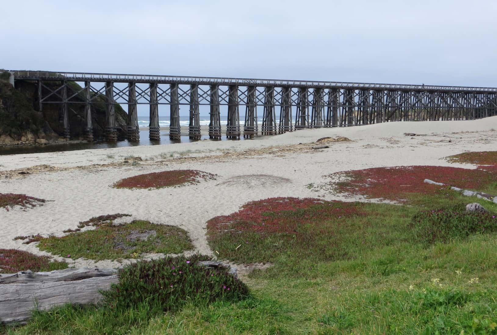 pudding-creek-beach-in-fort-bragg