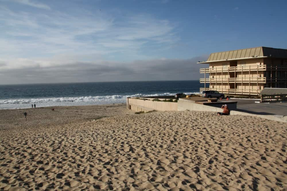 Image gallery monterey beach sunbathing for Best beach in monterey ca