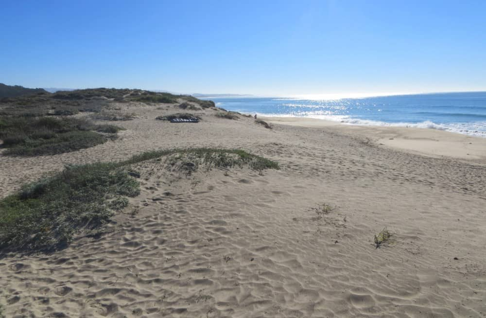 roosevelt-beach-half-moon-bay-state-beach