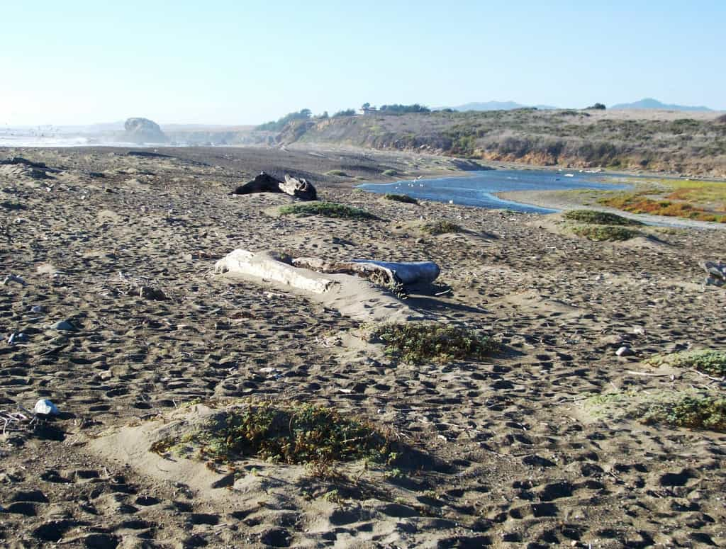 San Simeon Creek Beach