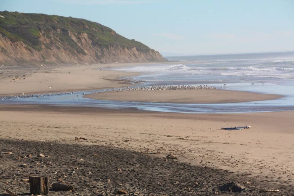 Waddell Creek Beach in Davenport