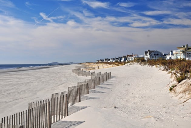 Best Dog Beaches In New Jersey