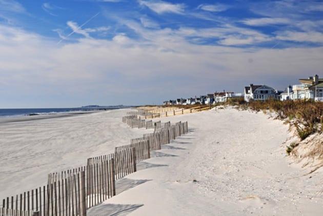 Free Dog Beaches In Nj