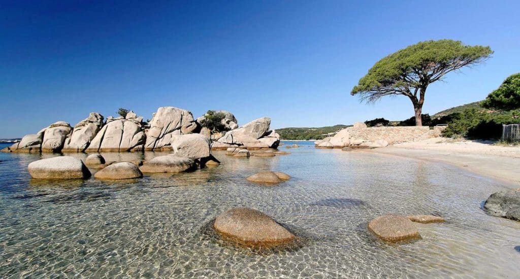 Palombaggia Beach, Corsica, best beaches of Corsica, Corsica beaches, best beaches in Corsica, beach travel destinations