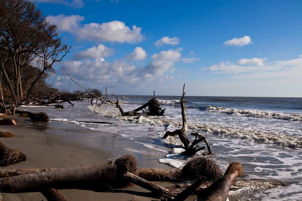 Hunting Island State Park, Beaufort, South Carolina, Sanibel Florida, Best East Coast Beaches, best beaches, South Carolina Beaches, Beach Travel Destinations