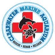 Clearwater Marine Aquarium, Clearwater Beach Florida, Clearwater Beach Vacation Guide, Clearwater beaches, Florida Beaches