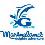 Marineland Dolphin Adventure, St. Augustine Florida, Florida East Coast Beaches