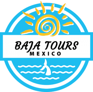 Baja Tours Mexico Todos Santos, Todos Santos travel, Todos Santos Beaches, best beaches of Todos Santos, Baja beaches, best beaches of the Sea of Cortez, Sea of Cortez beaches, Baja beaches