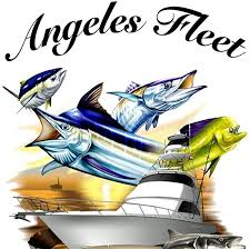 Angeles Fleet San Jose del Cabo, San Jose del Cabo vacations, best beaches of San Jose del Cabo, San Jose del Cabo beaches, best beaches of the Baja, best beaches of the Sea of Cortez