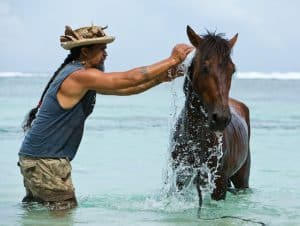 horseback riding in Austral Islands French Polynesia, hotels in the Austral Islands, Austral Islands hotels, things to do in French Polynesia, Austral Islands French Polynesia, Austral and Bass Islands