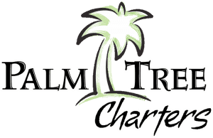 Palm Tree Charters, St. John, U.S. Virgin Islands, things to do in St. John, best beaches of St John, Lesser Antilles, Leeward Islands, best beaches of the Caribbean, USVI best beaches.