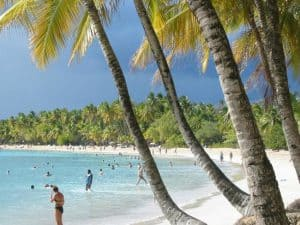 Les Salines, Martinique, Things to do in Martinique, Windward Islands, Lesser Antilles, Martinique Travel Guide, Martinique beaches, best beaches of the Caribbean