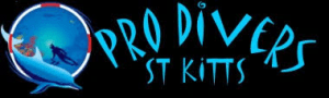 Pro Divers, St Kitts and Nevis, Leewar Islands, Lesser Antilles, things to do in Nevis, things to do in St Kitts, Nevis beaches, St Kitts beaches, best beaches of the Caribbean, St Kitts and Nevis Travel