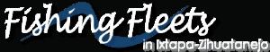 Fishing Fleets, Ixtapa, best things to do in Ixtapa, Mexican Riviera, Ixtapa beaches, best beaches of Mexico