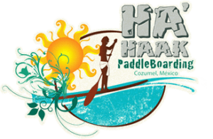 Ha Haak Paddle Boarding Cozumel, Cozumel, Yucatan Peninsula, Cozumel beaches, Yucatan Peninsula beaches, best Mexico beaches, Cozumel things to do, Cozumel best restaurants, Cozumel nightlife