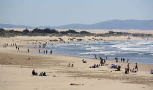 Pismo State Beach, Arroyo Grande beaches, Central California beaches, best beaches in California, Pismo Beach, beach travel, beach travel destinations, things to do in Arroyo Grande, best hotels in Arroyo Grande, best restaurants in Arroyo Grande, best bars in Arroyo Grande, Arroyo Grande beaches