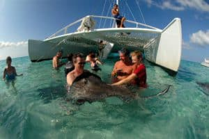 Turtles & Stingray Land & Sea Excursion Shore Excursion, Western Caribbean Cruise Itinerary, Western Caribbean Cruise Ports, Western Caribbean Cruise shore excursions, best cruise deals, cruise deals