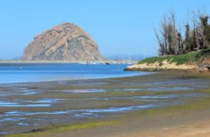Morro Bay State Park, Morro Bay Vacations, Morro Bay Beaches, California beaches, Central California Beaches, things to do in Morro Bay, best restaurants in Morro Bay, best bars in Morro Bay, best hotels in Morro Bay