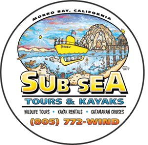 Sub Sea Tours & Kayaks, Morro Bay Vacations, Morro Bay Beaches, California beaches, Central California Beaches, things to do in Morro Bay, best restaurants in Morro Bay, best bars in Morro Bay, best hotels in Morro Bay