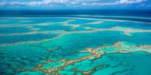 Great Barrier Reef, Cairns Australia, Cairns Australia beaches, best Australia beaches, things to do in Cairns Australia, best restaurants in Cairns Australia, best hotels in Cairns Australia, Australia beaches, visit Cairns Australia