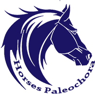 Horses Paleochora, Crete Greece, Elafonisi Beach Crete Greece, Greece beaches, things to do in Crete, Elefonisi Beach restaurants, best hotels in Crete, best hotels at Elafonisi Beach