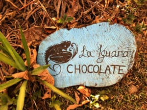La Iguana Chocolate, Manuel Antonio Park Costa Rica, best Costa Rica beaches, top beaches in the world, world's best beaches, things to do in Manuel Antonio, best hotels in Manuel Antonio National Park, best restaurants in Manuel Antonio National Park