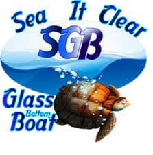 Sea It Clear Tours, British Virgin Islands beaches, The Baths Virgin Gorda, Virgin Gorda beaches, things to do in Virgin Gorda, best restaurants in Virgin Gorda, best hotels in Virgin Gorda, best bars in Virgin Gorda, top beaches in the world