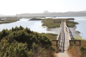 Elkhorn Slough National Estuarine Research, Moss Landing CA, Moss Landing beaches, best beaches in California, Central California beaches, things to do in Moss Landing CA, Moss Landing CA Hotels, best restaurants in Moss Landing CA, best bars in Moss Landing CA