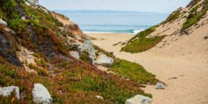 Fort Ord Dunes State Park, Best Central California beaches, Sand City Beaches, things to do in Sand City, best restaurants in Sand City, best bars in Sand City, California beaches
