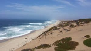 Marina State Beach, Moss Landing CA, Moss Landing beaches, best beaches in California, Central California beaches, things to do in Moss Landing CA, Moss Landing CA Hotels, best restaurants in Moss Landing CA, best bars in Moss Landing CA